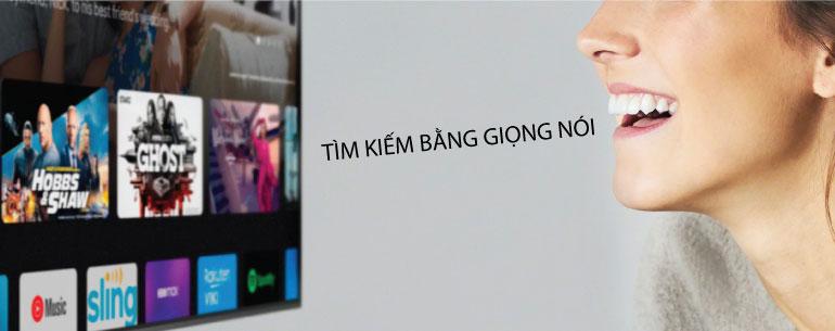 tim-kiem-bang-giong-noi